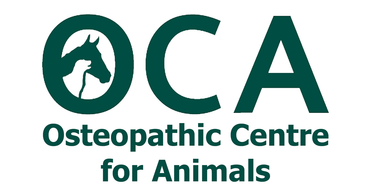 OCA - The OCA Team